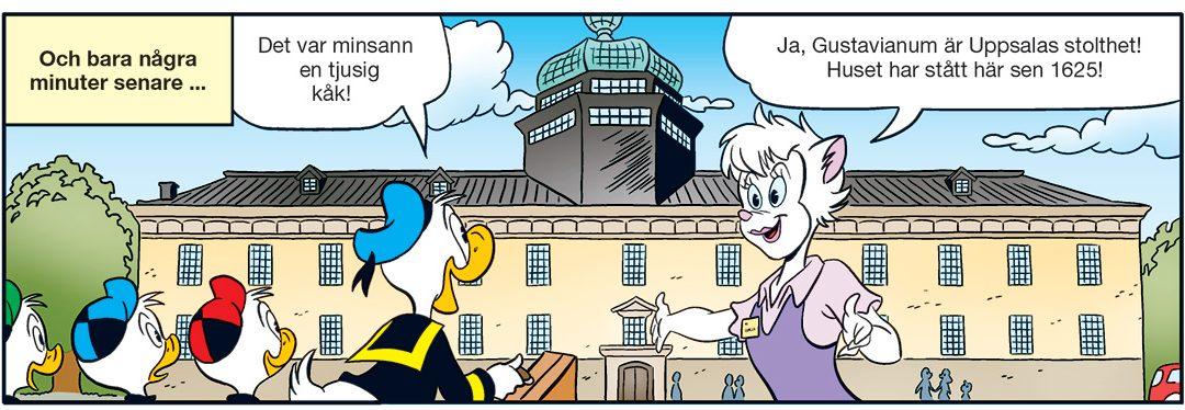 Rösta nu: vilken stad ska Kalle besöka nästa år?