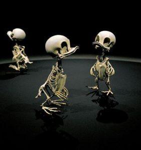 Den koreanska skulptören Hyungkoo Lee har gjort Animatus, en serie skelett med figurer från tecknade serier.
